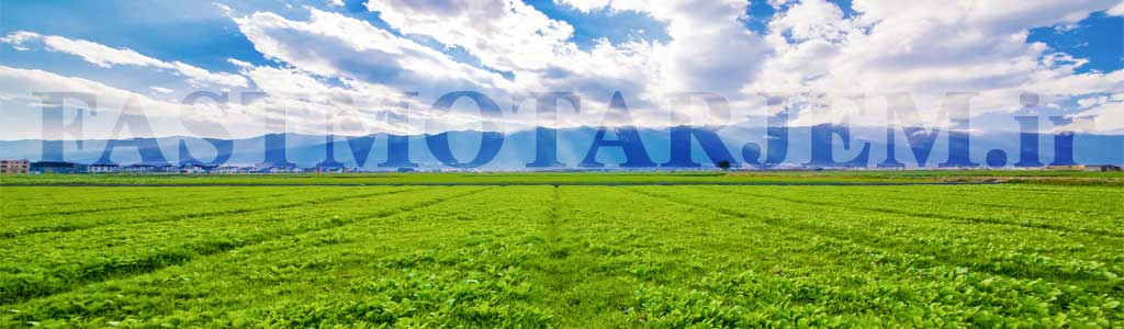 ترجمه تخصصی مقاله کشاورزی